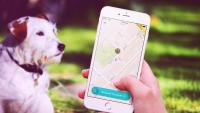 "This ""Uber For Dog Poop"" App Is Definitely Fake–Sorry, Sharing Economy Enthusiasts"