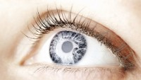 Researchers Have A Vision: Cure Blindness By Regrowing Retinas And Optic Nerves