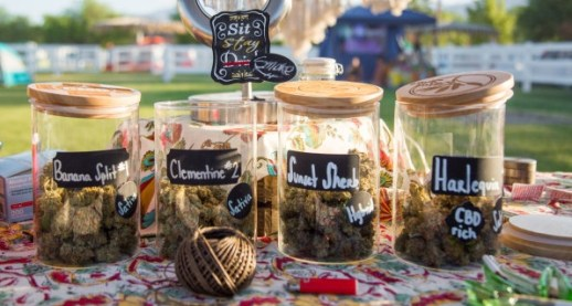 Why This Feminist Weed Camp Isn't Just For White Women | DeviceDaily.com