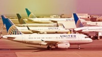 United Airlines at fault in dog's death, brand reputation crashes again