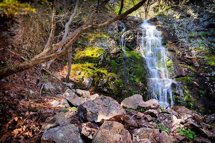 Black Bear Falls & Pine Hollow