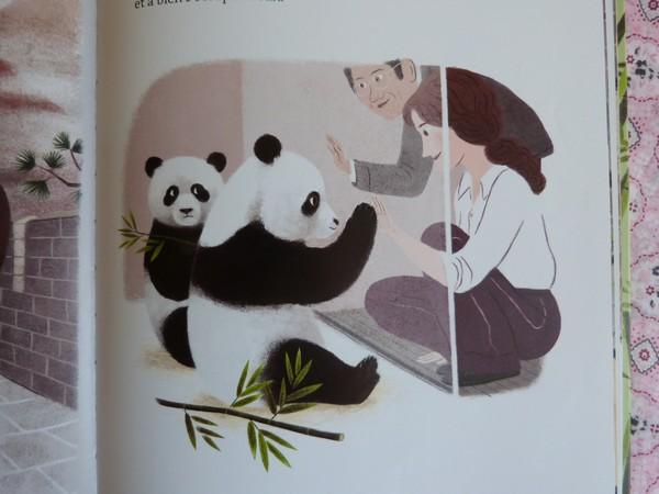 yen yen le panda 008