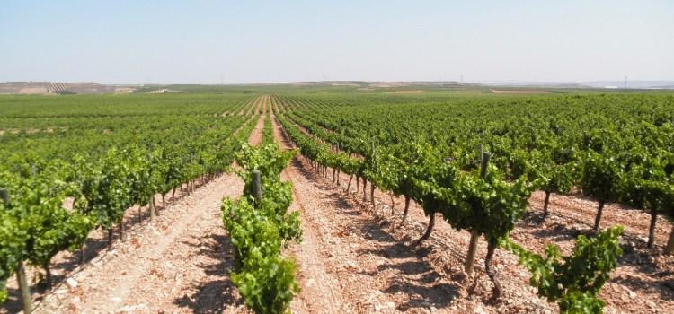 Rioja Baja, ¡ahora! también cuenta.