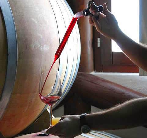 Control en la elaboración del vino, extracción por pipeta. Fuente: Suertes del Marqués