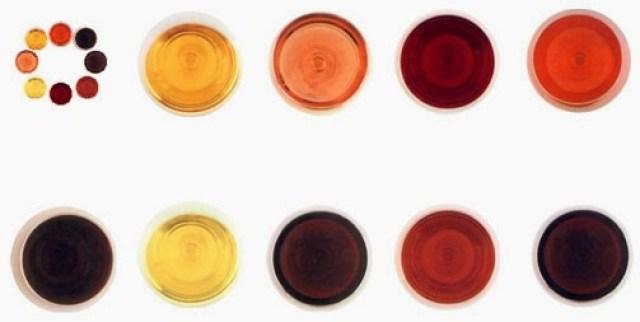 Tipos de vinos. Fuente [en linea]: www.conocimientoytecnologia.org
