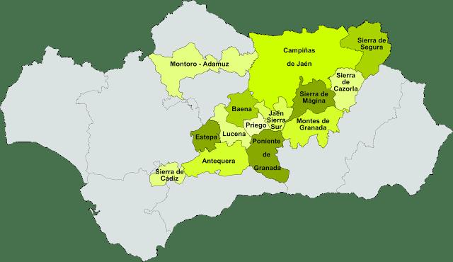 Denominaciones de Origen de AOVE en Andalucía .Fuente [en línea] www.zonu.com