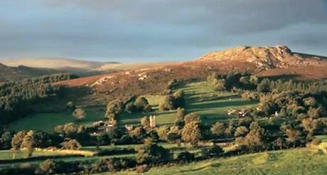 Dartmoor on War Horse
