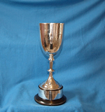 Medley Relay 4 x 100m - Male - The Ilfracombe Cup