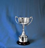 200m Backstroke - Junior Male - Townsend Trophy