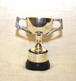 Under 15 Knock Out - Legg Cup