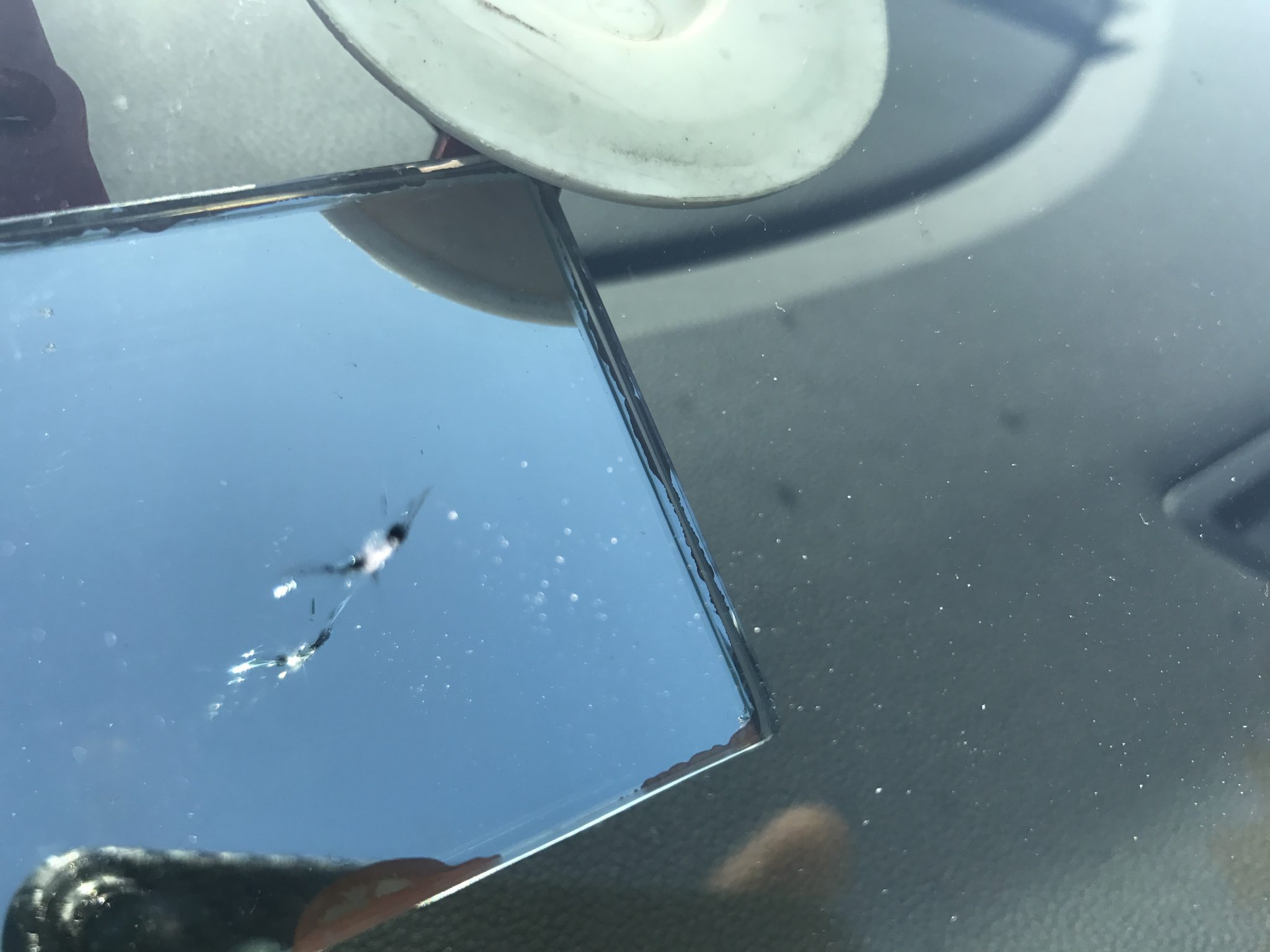 VW Golf Windscreen Repair
