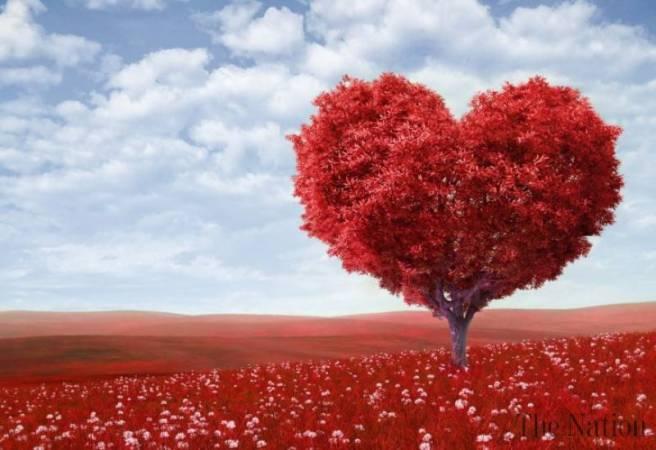feng shui dragoste - noroc in iubire