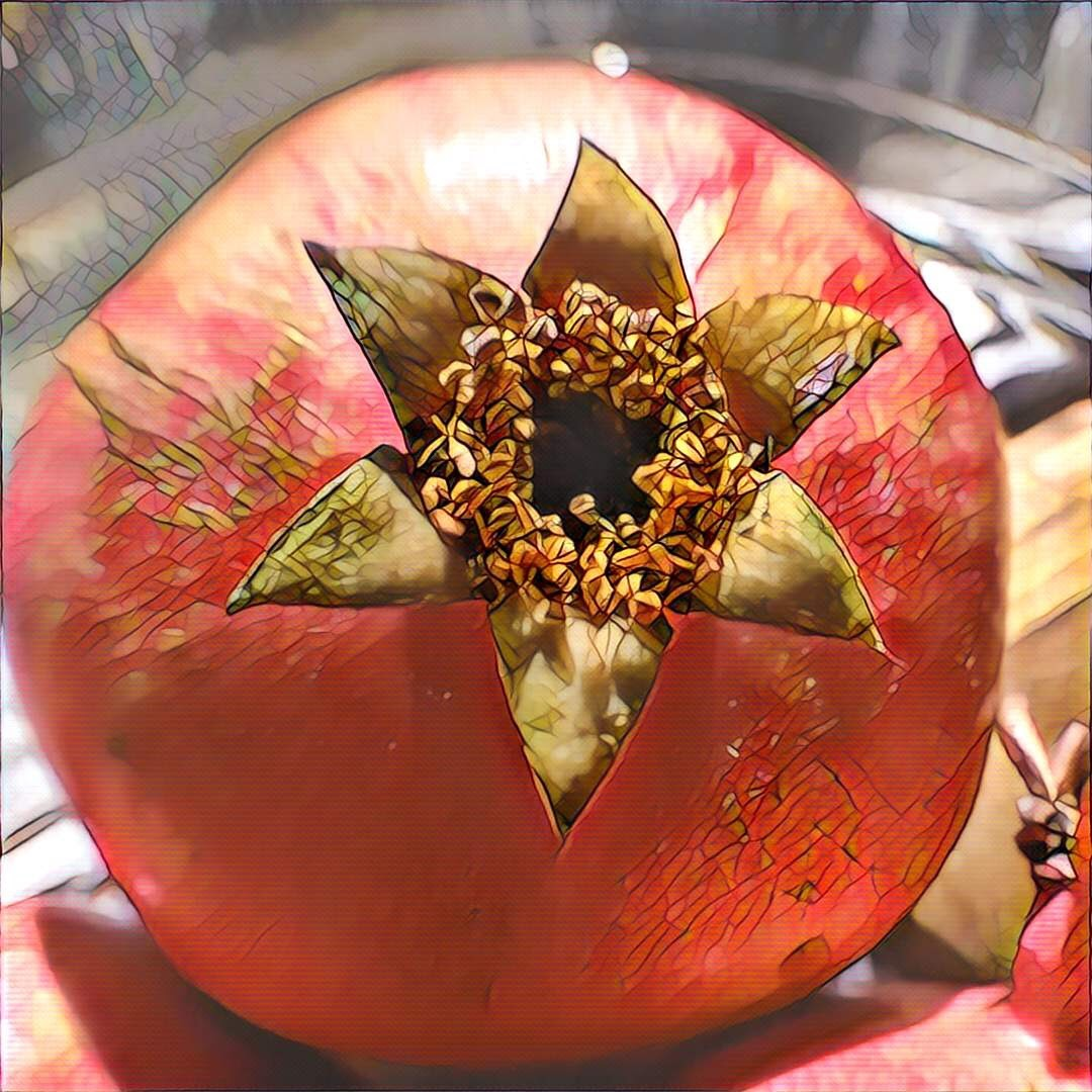 Digitally altered photo of a pomegranate
