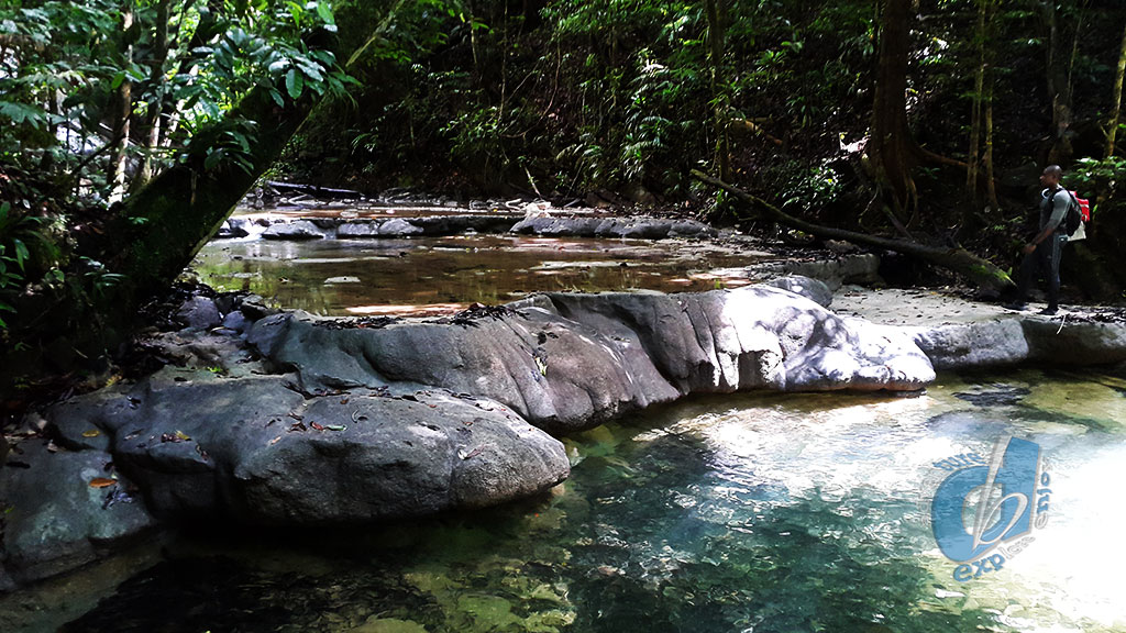Turure Water Steps