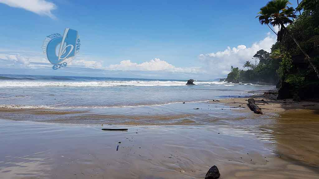 Damien's Bay