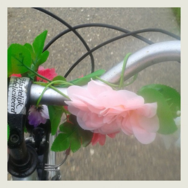 2015-09-12 fiets