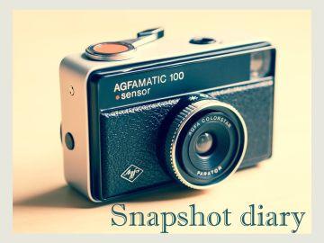 Snapshot diary