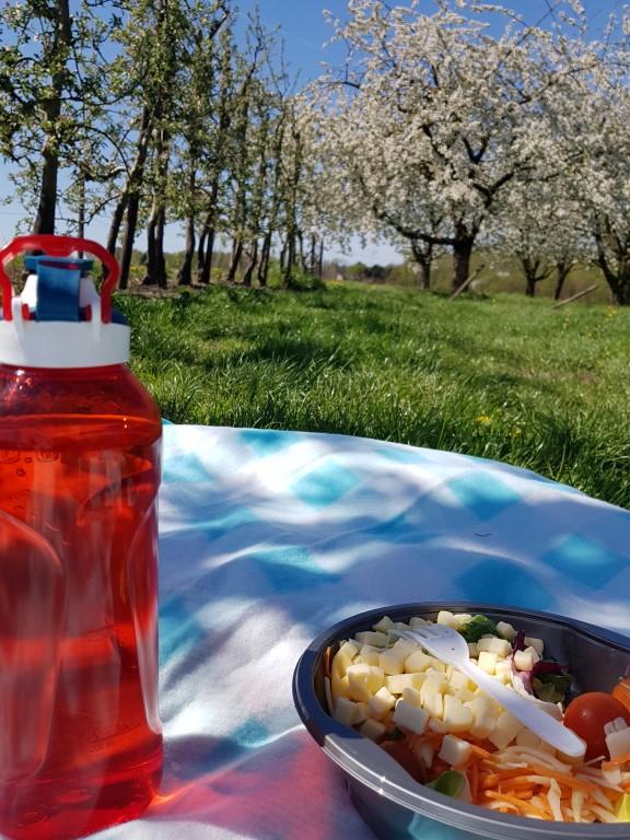 eten in de fruitboomgaard onder de zalige bloesem !