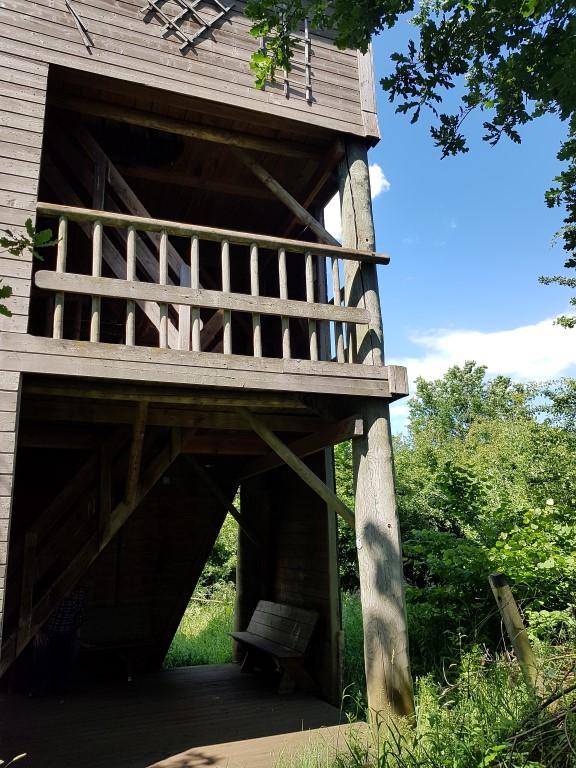 uitkijktoren in Demerbroeken