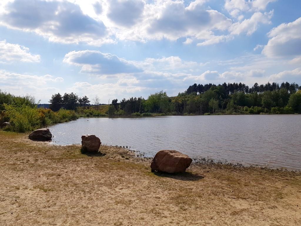 Nationaal Park Hoge Kempen  - via poort Mechelse Heide