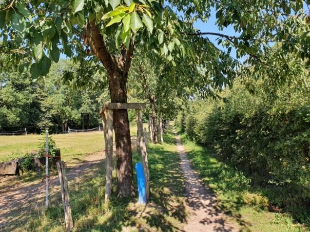 Historische route Stein blauw paaltje