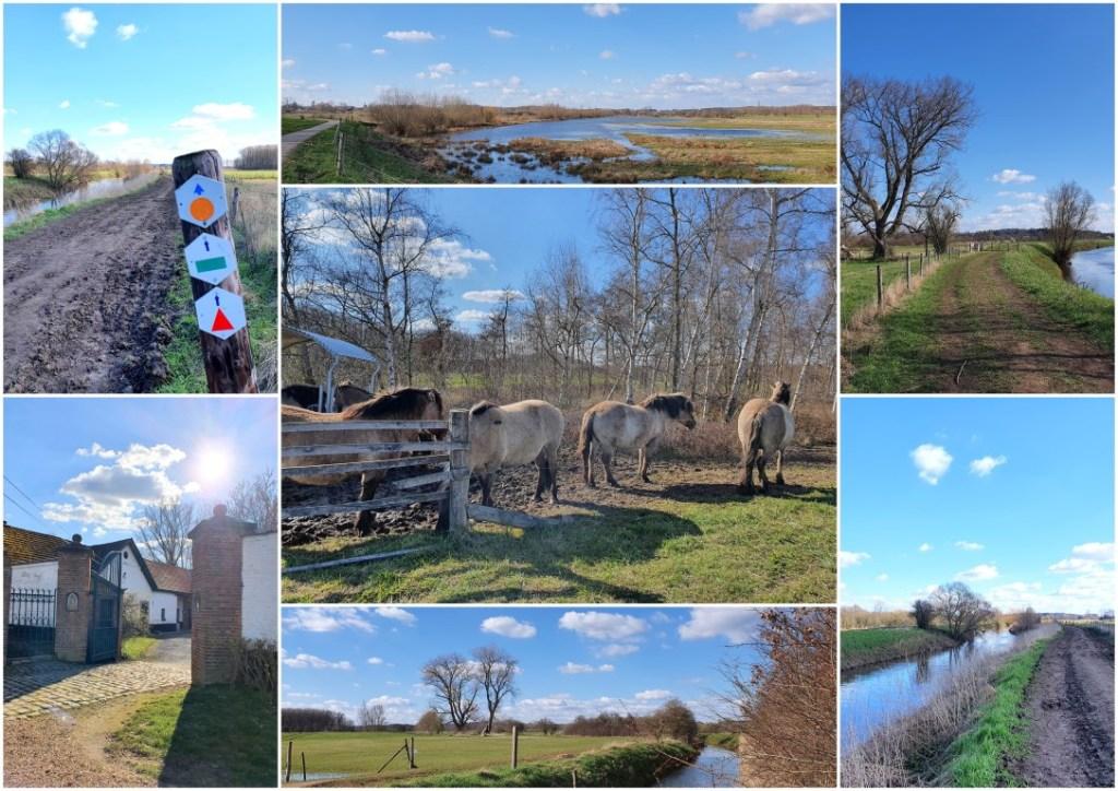 Collage wandeling Webbekoms Broek