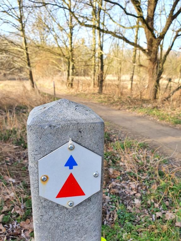 Demervalleiwandeling in Hoeselt