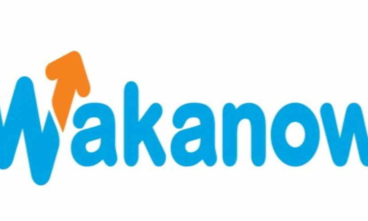 Download Wakanow mobile app