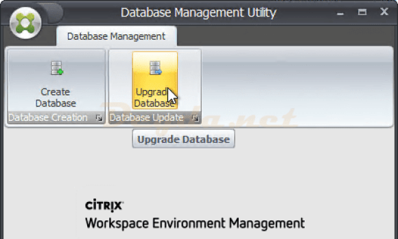 Database Management Utility