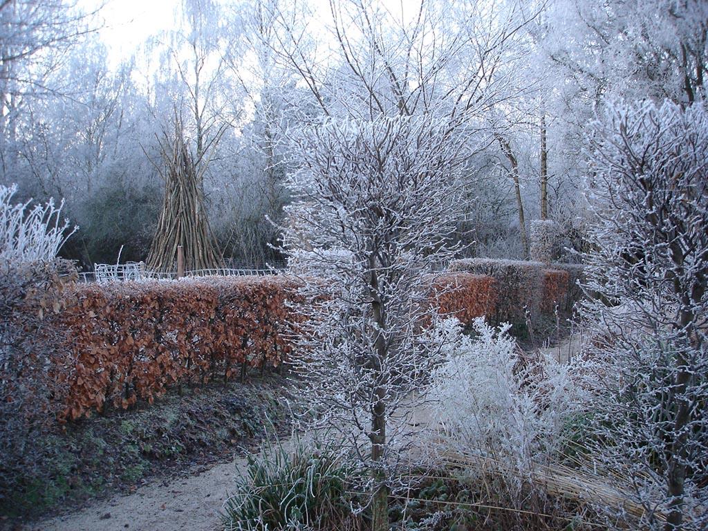 De ZintuigenTuin - Seizoen -Winter - (32)