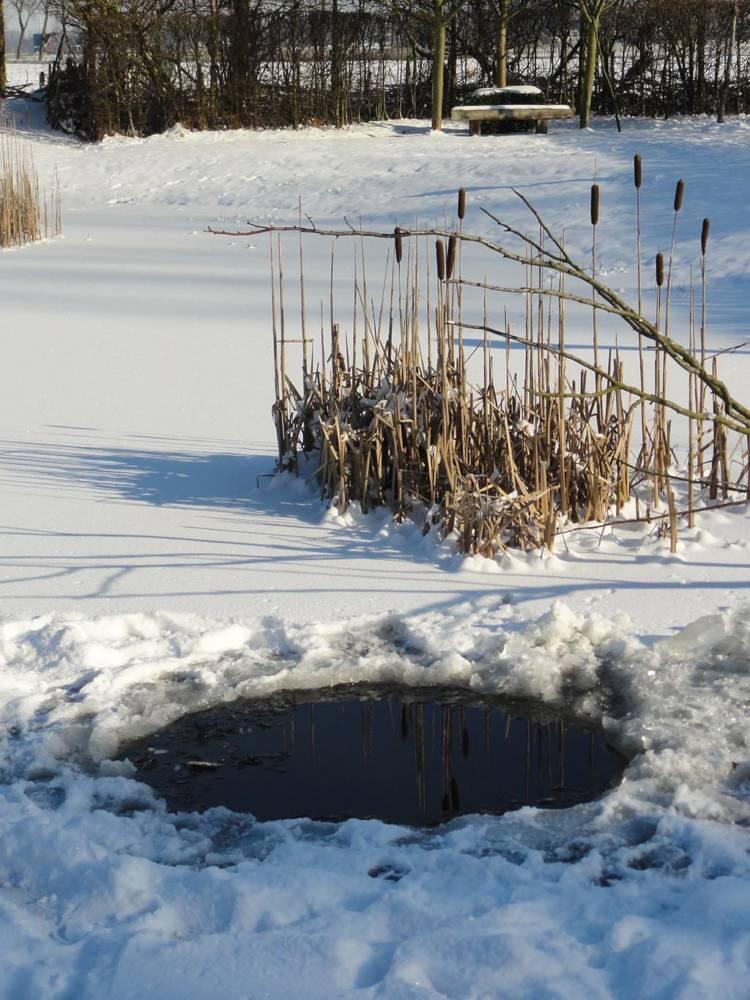 De ZintuigenTuin - Seizoen -Winter - (74)