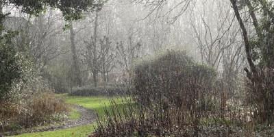 Schoonheid van regen - ZinTUIgeN - Heerhugowaard