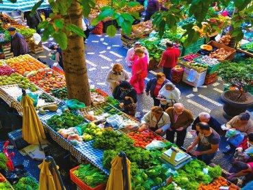 nature bazaar DforDelhi