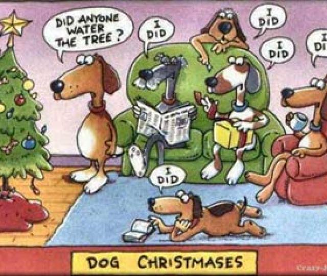 Funny Dog Cartoon Dogs Watering Christmas Tree