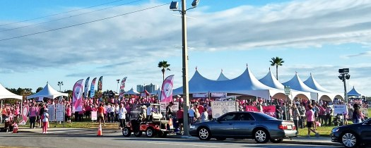 Making Strides Walk for Breast Cancer 2017
