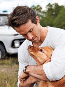 Ryan Reynolds' Baxter