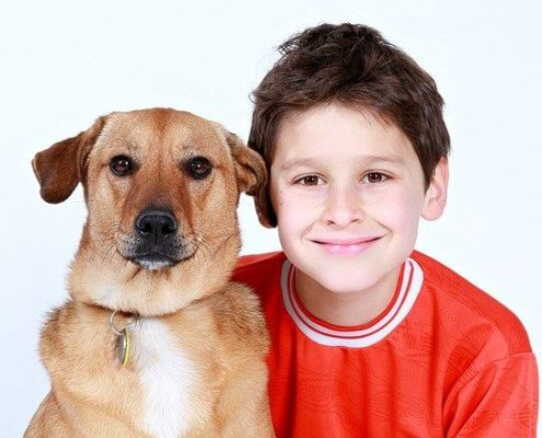best dogs for families
