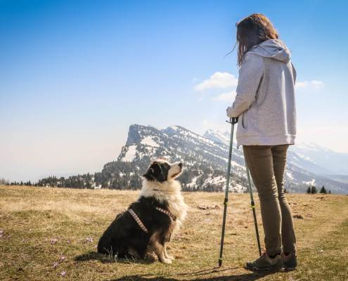 hitting the trail with your dog