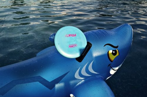 Innova Whale riding on a shark