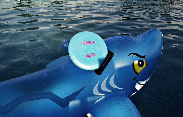 Innova Whale riding on a shark