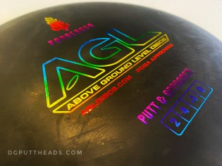 Above Ground Level Discs Ponderosa