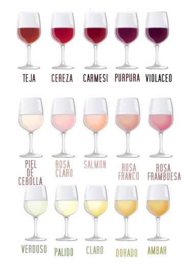 Clasificación del vino por color