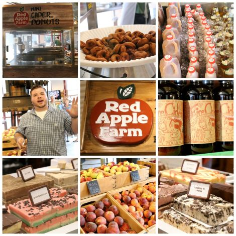 Boston Public Market 7