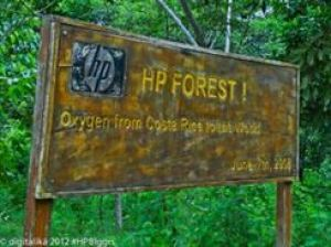 hp forest