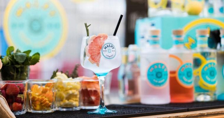 Onze Top 5 Gin's van 2019!
