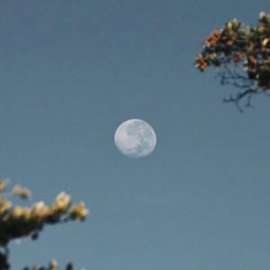 Lunar Eclipse June 2020: भारत में अगला चंद्रग्रहण कब और कितने बजे होगा, घर बैठे देख सकेंगे लाइव