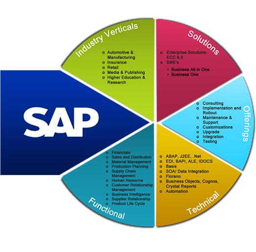 SAP_Digi555