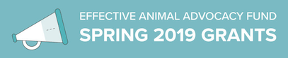 Effective Animal Advocacy