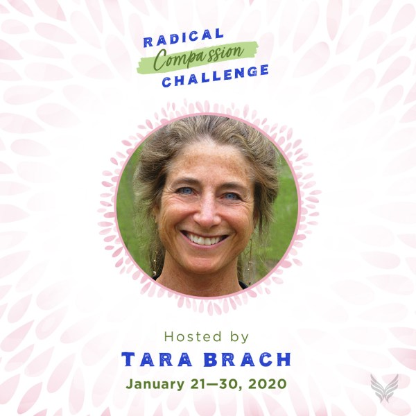 The Radical Compassion Challenge with Tara Brach