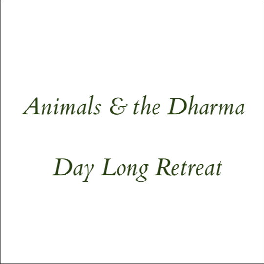 Animals & the Dharma - Day Long Retreat